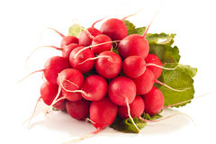 Radish. Isolated on white background royalty free stock photos