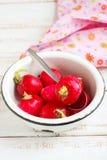 Radish. Fresh radish in a white bowl Royalty Free Stock Photo