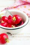 Radish. Fresh radish in a white bowl Royalty Free Stock Image