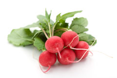 Radish. Of a white background Royalty Free Stock Image