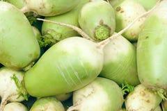 Radish. The close-up of fresh radish Royalty Free Stock Photography