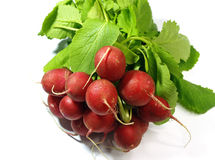 Radish. Fresh radish on the white background Royalty Free Stock Photo