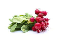 Radish. With leaf and root royalty free stock photos