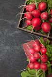 Radish agriculture background, bright brunch, fresh food.  stock photos