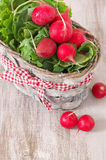 Radish in basket Stock Photos