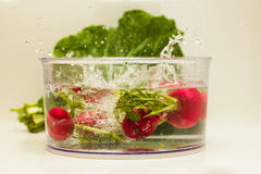 Radish being dropped on water bowl Stock Photos