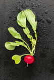 Radish on black background. Fresh healthy radish laying on wet black background Stock Photo