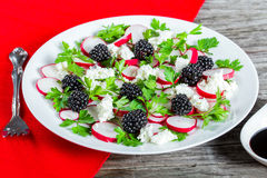Radish, blackberry, goat cheese and parsley low-calorie salad Stock Image