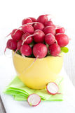 Radish in bowl Royalty Free Stock Images
