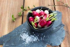 Radish in bowl. Radish in black bowl on stone slate with coarse salt Royalty Free Stock Photos