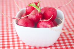Radish in bowl. On checkered fabric Royalty Free Stock Image