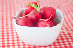 Radish in bowl. On checkered fabric Royalty Free Stock Images