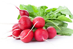 Radish Bunch Stock Photo