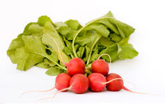 Radish bunch Royalty Free Stock Images