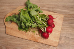 Radish. Bunch of radishes on a cutting board Stock Photography