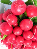 Radish bunch zoom Stock Photography