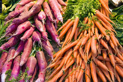 Radish and Carrots Stock Image