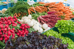 Radish, carrots and other vegetables for sale. At a market Stock Photo