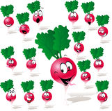 Radish cartoon Royalty Free Stock Photography