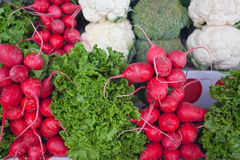 Radish and cauliflower on the market. Stock Photography