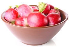 Radish in ceramic plate Stock Images