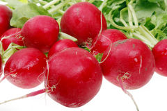 Radish close-up Stock Photography