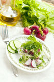 Radish  with cottage cheese. With greens and fresh cucumbers Royalty Free Stock Photos
