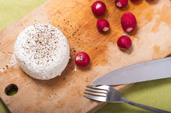 Radish and cottage cheese Stock Photography