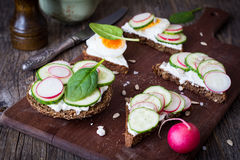 Radish, cucumber and egg sandwiches. Radish, cucumber, spinach, boiled egg and goat cheese snack toasts on wooden cutting board. Closeup view Royalty Free Stock Images