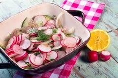 Radish cucumber and onion salad. Fresh summer salad.  Cucumber, Radish and sliced onion salad.  Light healthy fare Royalty Free Stock Image