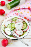 Radish and cucumber salad. With sour cream Royalty Free Stock Photography