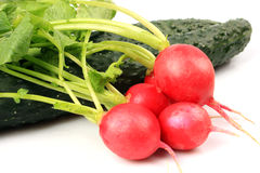Radish and cucumber Royalty Free Stock Image