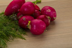 Radish with dill. On the desk Stock Photography