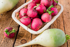 Radish farmer eco Royalty Free Stock Images