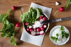 Radish with fresh herbs and sour cream. Vitamin salad with parsley and green onions. Healthy food. Top view. royalty free stock image