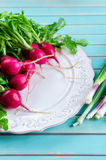Radish and fresh spring onions over rustic wooden table. Fresh summer vegetables of radish on plate and bunch of green spring onions or scallions against Royalty Free Stock Image