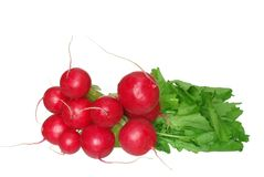 Radish from green leaves Stock Photos