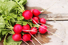 Radish with green tops. Still life of red radishes with tops on the board Royalty Free Stock Photo