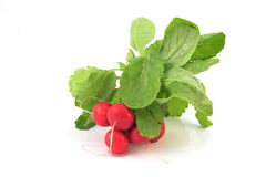 Radish Group Stock Images