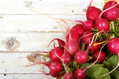 Radish on grunge background Royalty Free Stock Photo