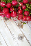 Radish on grunge woden board Stock Photography