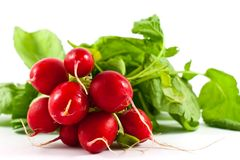 Radish isolated on white Royalty Free Stock Photo