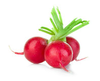 Radish isolated on white Royalty Free Stock Photography