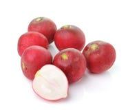 Radish isolated on white background. Fresh radish isolated on white background Royalty Free Stock Images