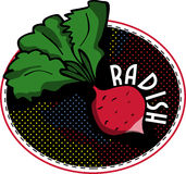 Radish label Royalty Free Stock Photography