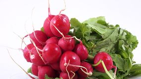 Radish with leaves stock video