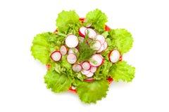 Radish and lettuce Royalty Free Stock Image