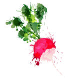 Radish made of colorful splashes Royalty Free Stock Photos