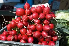 Radish in the market Stock Photos