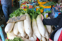 Radish in market, malaysia. This is radish in market, malaysia Stock Photography